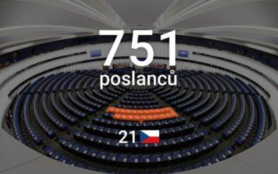 České politické strany v Evropském parlamentu aneb Co vyplývá z jejich členství ve frakcích EP.